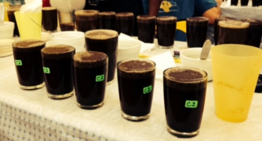 Cupping Session at Coffee Lab, Bangalore