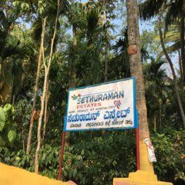 Background image for Sethuraman Estate
