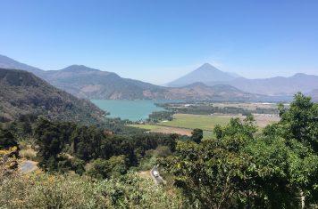 Image for February Origin Focus: Guatemala, India, and Brazil