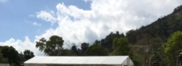 Background image for Costa Rica origin