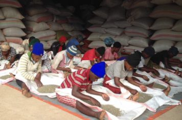Image for Kinini Coffee Washing Station and A New Beginning Rwanda