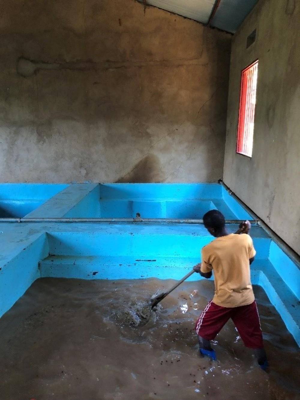 Kinini washing station Rwanda washing beans