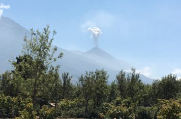 Image for Guatemala Update - Guatemalan Children's Burn Foundation