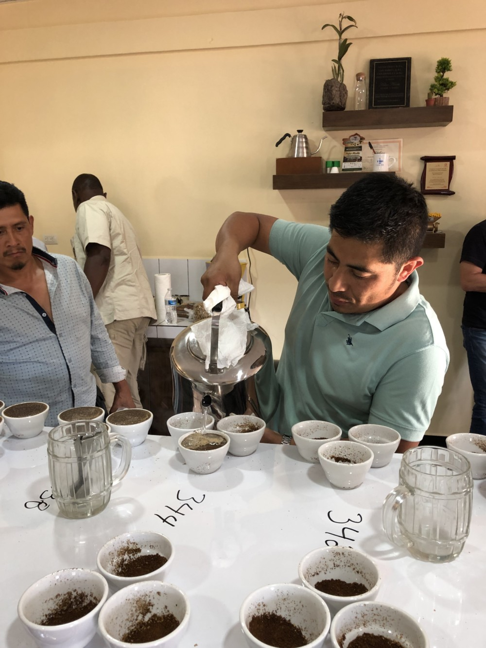 Cupping at CAFESA
