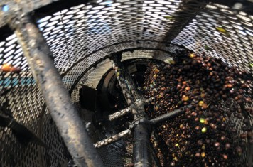 Image for Coffee Market Report July 2019