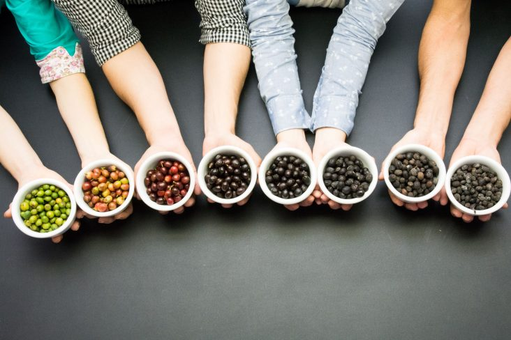 """Image for Daterra's """"Coffee Mise en Place"""""""