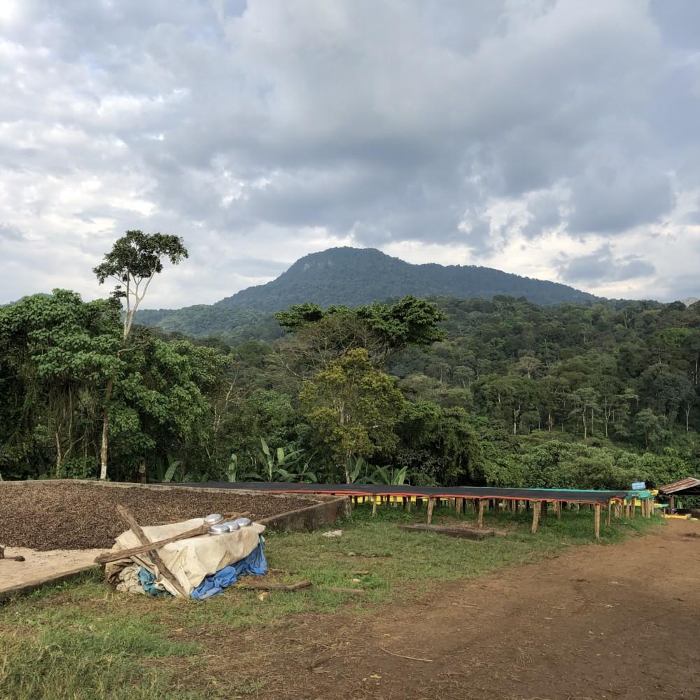 Amora Gedel mountain