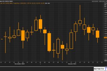 Image for Fortnightly Market Report 26/01/21