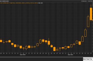 Image for Fortnightly Market Report 26/07/21