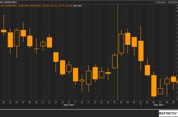 Image for Fortnightly Market Report 13/07/21